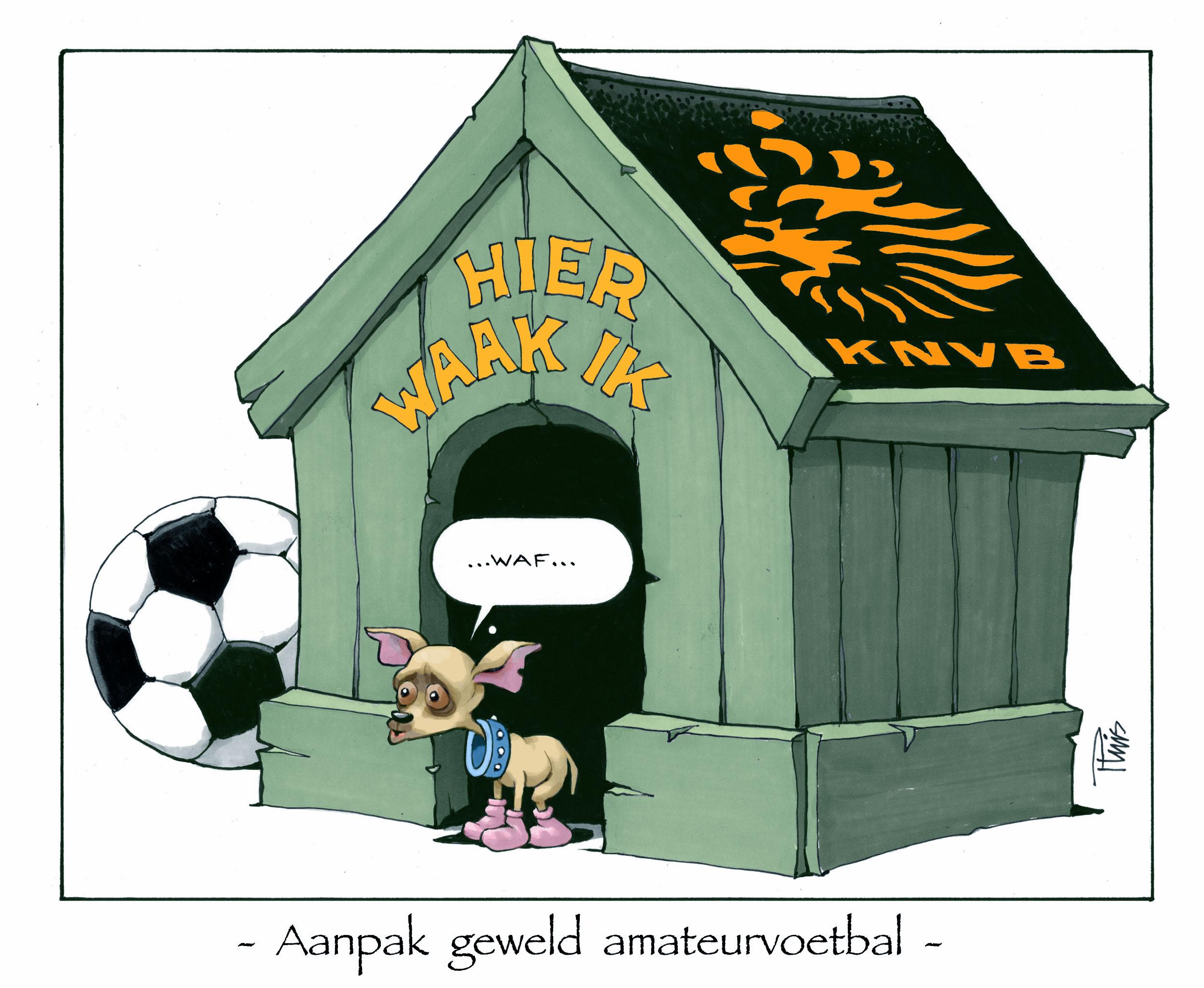cartoon KLEUR Binnenland 06-12-2012  kopie